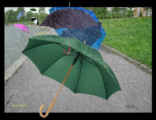 raining umbrellas2