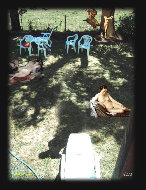 backyard-in-early-july2