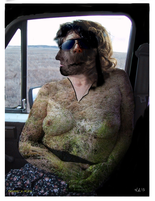 farmers-wife