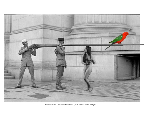 please-mam-you-must-remove-your-parrot-from-our-gun