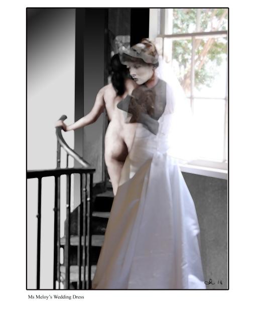 Ms Meloy's Wedding Dress