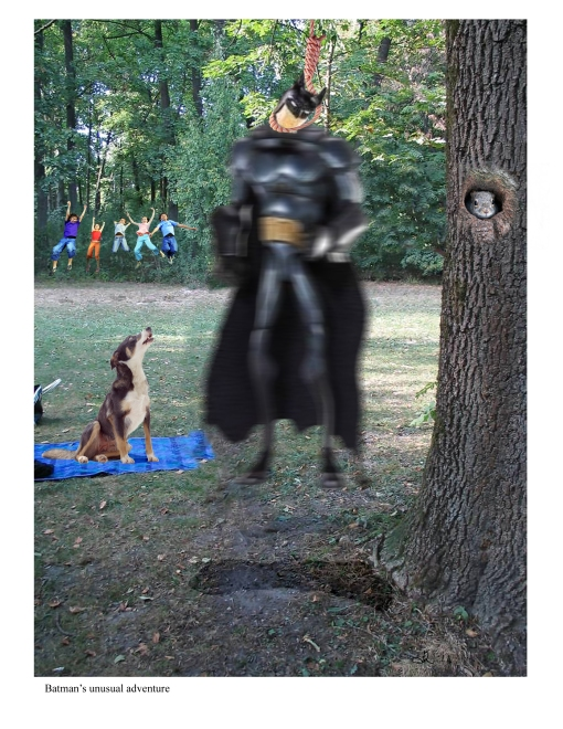 Batman's unusual adventure