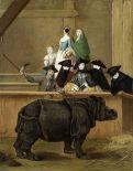 240px-Pietro_Longhi_1751_rhino