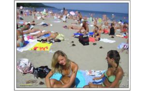 smallA Day At The Beach