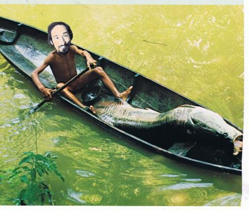 Vic and fish